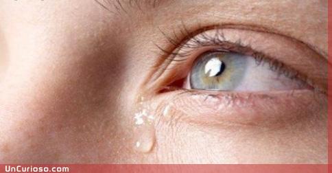 Por qué lloramos