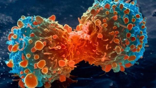 Qué significa cáncer