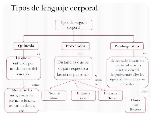 Cuántos tipos de lenguaje corporal hay