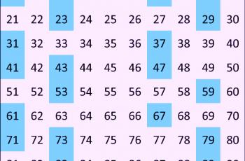 Cuáles son las propiedades de los números primos