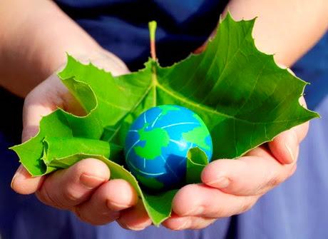 Curiosidades sobre el medio ambiente