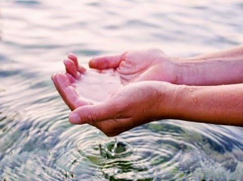 ¿Por qué es importante cuidar el agua?