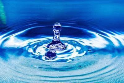 ¿Por qué es importante el agua?